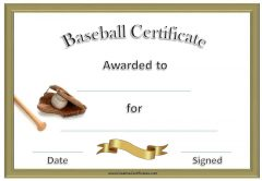 formal baseball certificate with baseball bat, glove and ball