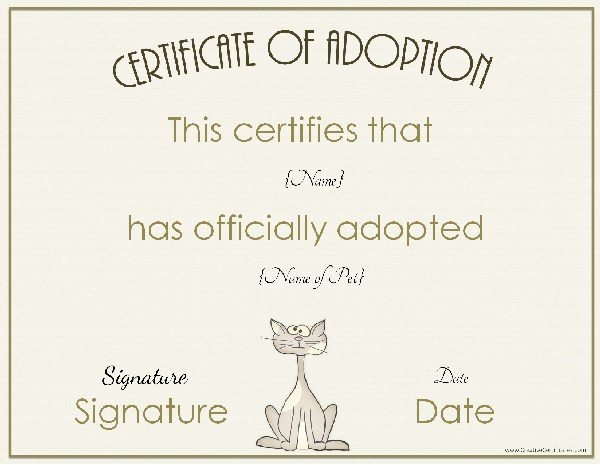 Adoption certificate for Adoption certificate template