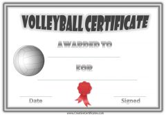 Volleyball certificate with a grey border, volleyball and red ribbon