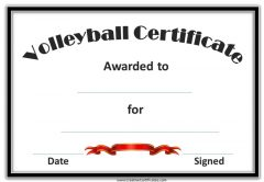 Volleyball award with a black border and red ribbon