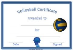 sports award for volleyball