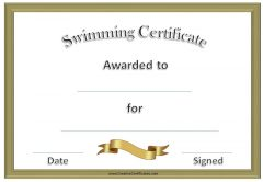 formal certificate with gold border and gold ribbon