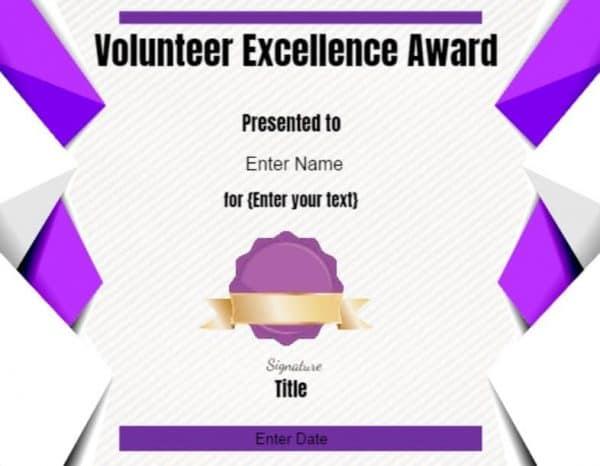 Volunteer Excellence Award